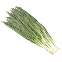 Лук Зеленый 100г пакет Спасибо за покупку