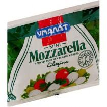 Сыр Моцарелла Чильеджина в воде 50% 125г п\уп