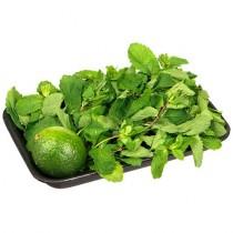 Набор свежей зелени для Мохито (мята, лайм) 150г подложка